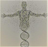 Мозг как инструмент питания и изменения ДНК